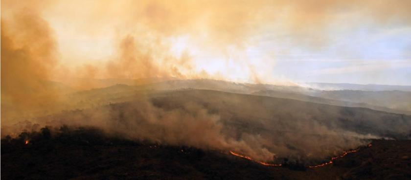 i12375-incendio