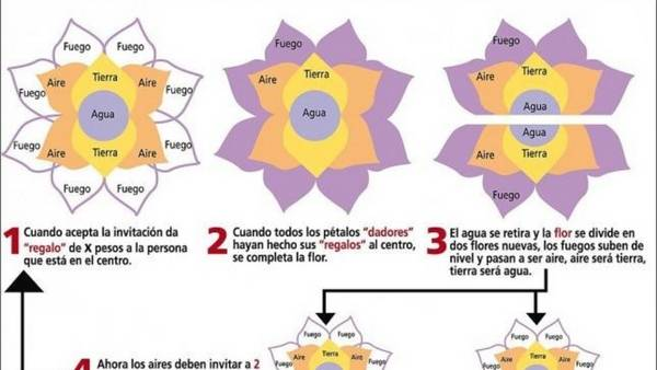 funciona-flor-abundancia-telam_claima20161014_0047_28