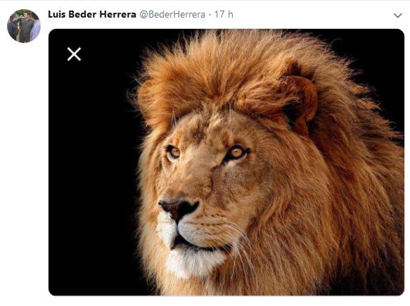 Luis Beder Herrera BederHerrera Twitter