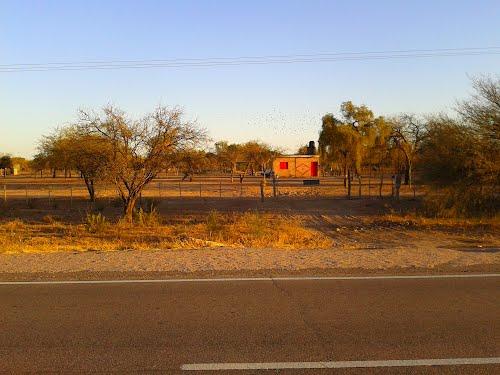 Encontraron en La Rioja a un anciano brasileño, abandonado y viviendo bajo unárbol